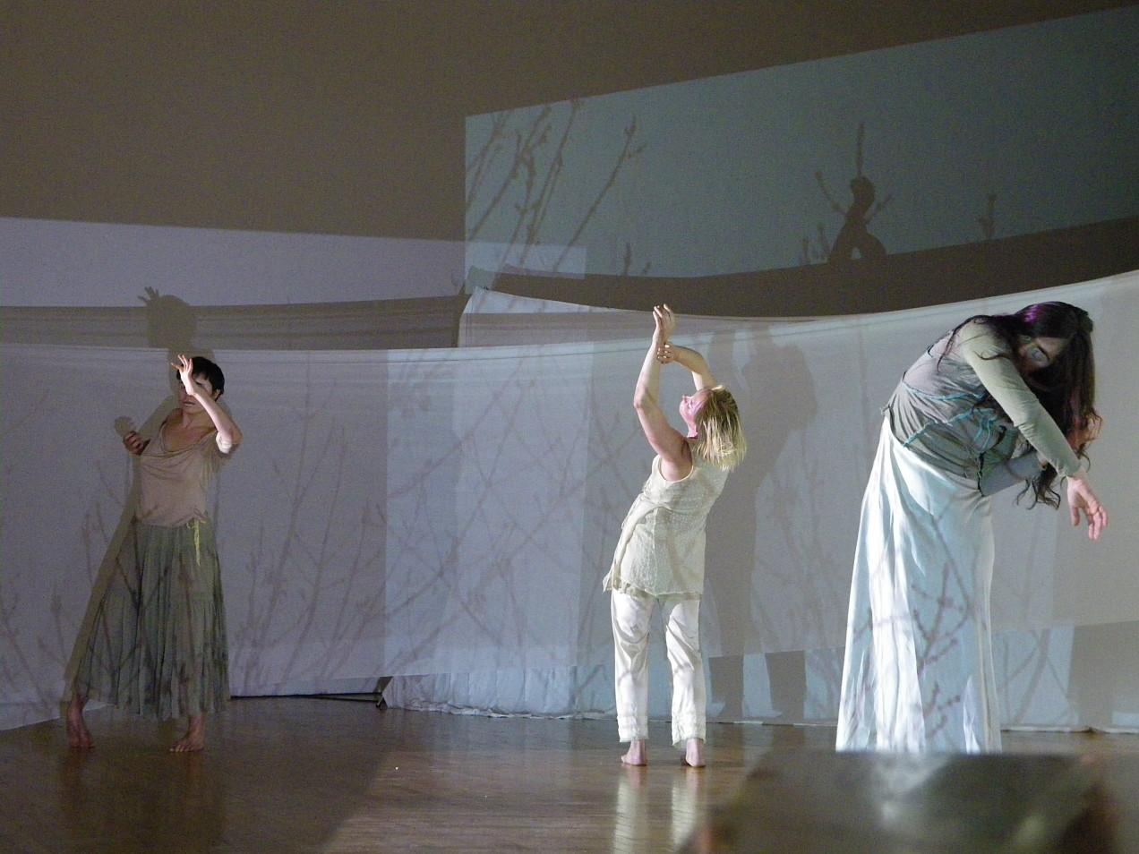 Mariam Ghani, Variations on a Haunted Wood, Erin Ellen Kelly, 2009, Queens Museum of Art